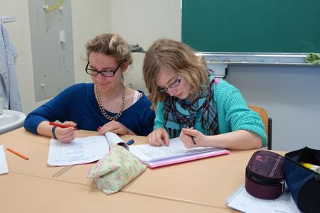 Begabungsförderung an der Dannewerkschule Schleswig