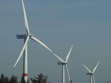 Studie: Schleswig-Holsteins Politik für Erneuerbare Energien ganz vorn