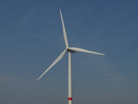 NABU: Gutachter bagatellisieren Windkraft Konflikte mit dem Artenschutz