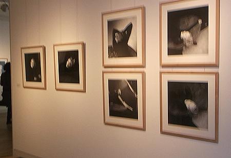 Eutin: Ausstellungen locken Freunde der bildenden Kunst