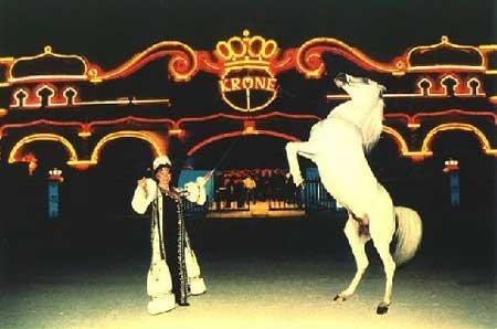 Circus Krone: Tierdressuren im Zwiespalt
