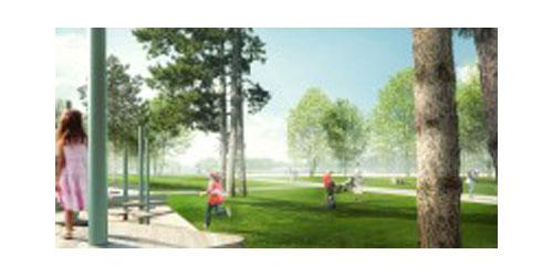 Eutin: Erneut umfangreiche Baumfällungen im Seepark und im Süduferpark