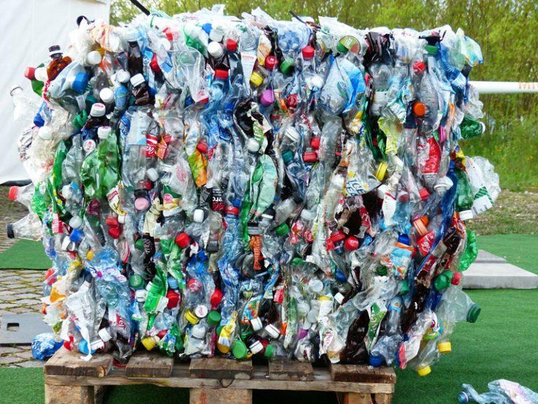 NDR: Esther Schweins im Einsatz gegen Lebensmittelverschwendung und Plastikwahnsinn