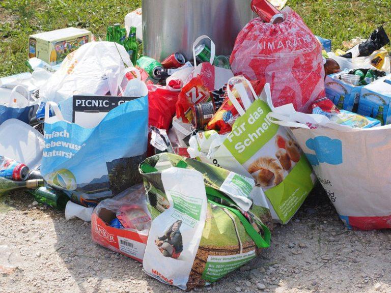 Bevor er im Wald landet! Abfalltrennung in Zeiten der Coronavirus-Pandemie