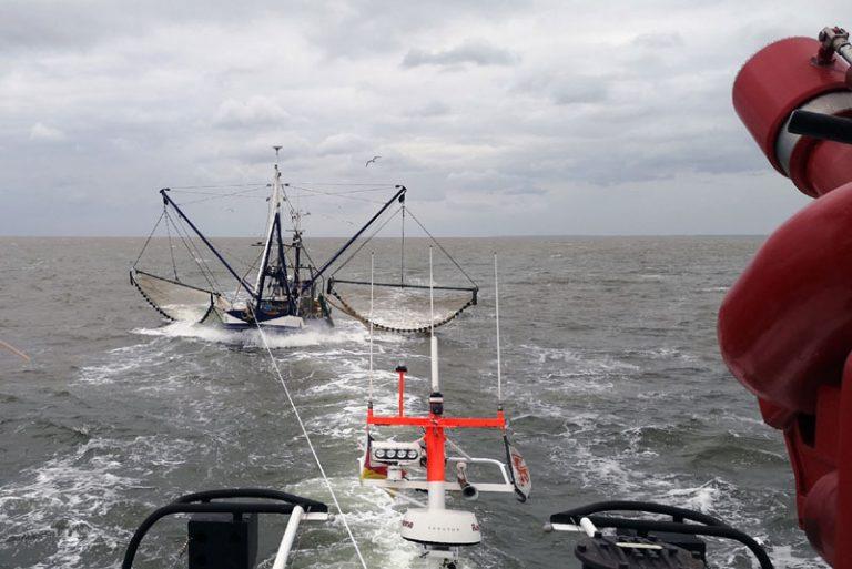 Fehmarn: Schwerverletzter auf Segelschiff / Manövrierunfähige Krabbenkutter